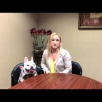 Tips on Home Selling with Pets by Karen
